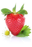 Strawberry berry fruit with leaves isolated on white Stock Photos