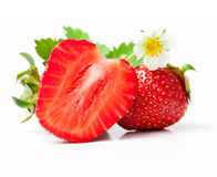 Strawberry berry with green leaf and flower Royalty Free Stock Image