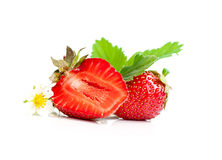Strawberry berry with green leaf and flower Royalty Free Stock Photos