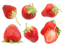 Strawberry berry on white Royalty Free Stock Image