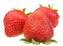 Strawberry berry on white Royalty Free Stock Photography