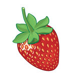 Strawberry. Big strawberry on white background Royalty Free Stock Photos