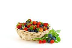 Strawberry and bilberry. In the bast-basket stock images