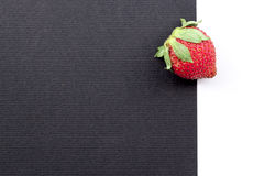 Strawberry. A strawberry on a black and white background Stock Images