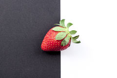 Strawberry. A strawberry on a black and white background Royalty Free Stock Images