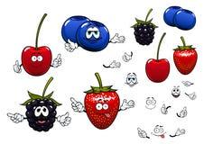 Strawberry, blackberry, cherry, blueberry fruits Stock Photos