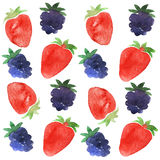 Strawberry and blackberry pattern. Water color painting Stock Image