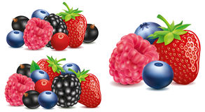 Strawberry, blackberry, raspberry, blueberry in different group Stock Photo