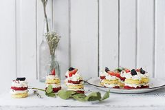 Strawberry and Blackberry Tarts on a Plate Royalty Free Stock Photo