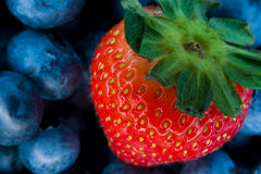 Strawberry and bluberry series. Mixed berries - bluberries and strawberries - series royalty free stock photos