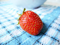 Strawberry. On a blue checkered cloth, macro Stock Image