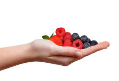 Strawberry with blueberries and raspberries in hand Royalty Free Stock Photo