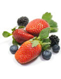 Strawberry, blueberry and blackberry. Components for tea: Strawberry, blueberry and blackberry Stock Images