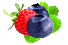 Strawberry and blueberry isolated. Isolated berries. Strawberry and blueberry isolated on white background as package design element royalty free stock photo