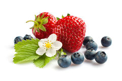Strawberry and blueberry Royalty Free Stock Photography