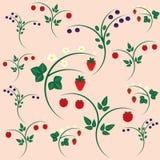 Strawberry blueberry raspberry on branches Stock Photo