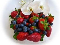 Strawberry and Blueberry on White Plate With Orchids royalty free stock photo