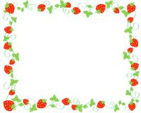 Strawberry border Stock Images