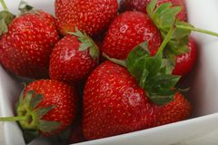 Strawberry in the bowl. Bright Strawberry in the bowl Stock Photos