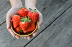 Strawberry in  bowl with hands. Red Strawberry in  bowl with hands Royalty Free Stock Image
