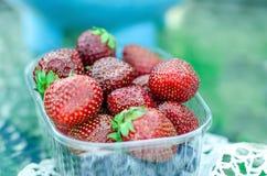 Strawberry box. Fresh ripe strawberry in the plastic punnet Stock Image