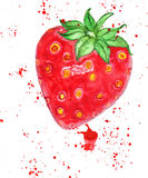 Strawberry. Bright vibrant watercolor strawberry with juice splatters Royalty Free Stock Photos
