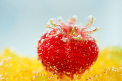 Strawberry with bubbles on a blue background Stock Images