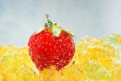 Strawberry with bubbles on a blue background Royalty Free Stock Image