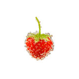 Strawberry in bubbles isolated on white Royalty Free Stock Photos