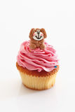 Strawberry buttercream cupcake with dog Stock Photography