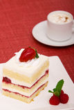 Strawberry cake with cappuccino. Slice of strawberry cake with cappuccino Stock Image