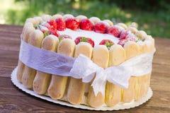 Strawberry cake Charlotte Stock Image
