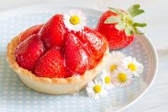 Strawberry cake dessert with spring daisy Stock Image