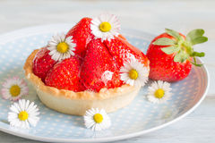 Strawberry cake dessert with spring daisy Royalty Free Stock Photo
