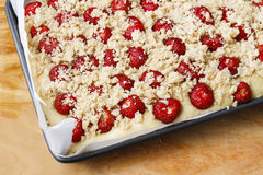 Strawberry cake with streusel (a crumbly topping of flour, butte Royalty Free Stock Photography