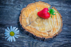 Strawberry and chamomile on a background of a wooden surface Royalty Free Stock Image