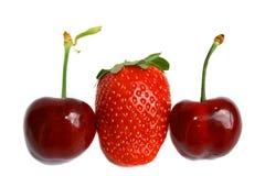 Strawberry and cherries Stock Image