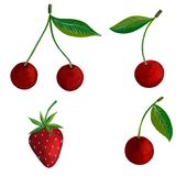 Strawberry and cherry Stock Photos