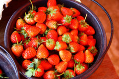 Strawberry, Chiengmai. Fresh strawberry, fresh red at Chiengmai, Thailand Royalty Free Stock Images