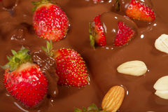 Strawberry in chocolate Royalty Free Stock Photography