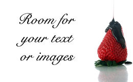 Strawberry with chocolate Royalty Free Stock Photo