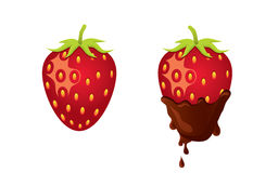 Strawberry with Chocolate Stock Photography