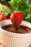 Strawberry in chocolate Stock Photos