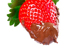 Strawberry with chocolate Royalty Free Stock Photography