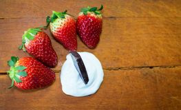 Strawberry with chocolate as dessert. Strawberry with chocolate as fresh bio dessert Stock Photos