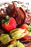 Strawberry Chocolate Cake Stock Image