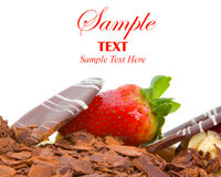 Strawberry and chocolate cake Royalty Free Stock Image