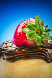 Strawberry Chocolate Cheesecake Stock Photo