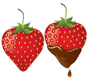Strawberry in chocolate Stock Images