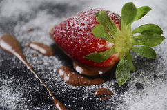 Strawberry and chocolate. Desert of strawberry with milt chocolate cover with sugar Stock Photos